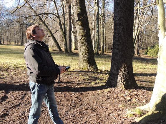 Baumkontrolle mit einem mobilen Erfassungsgerät