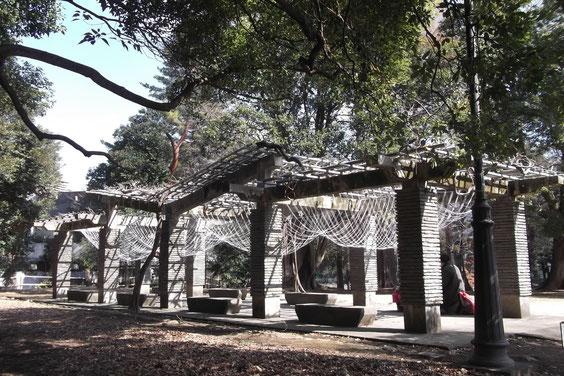 大宮公園再発見 Art in  氷川 出品設置 2015、2・21~3・15 「ささやき」 藤棚にロープ設置