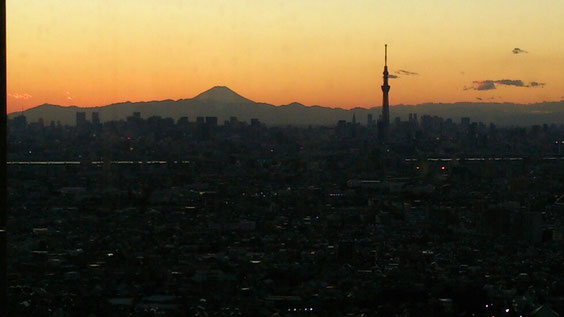 ◆都心の夕景。
