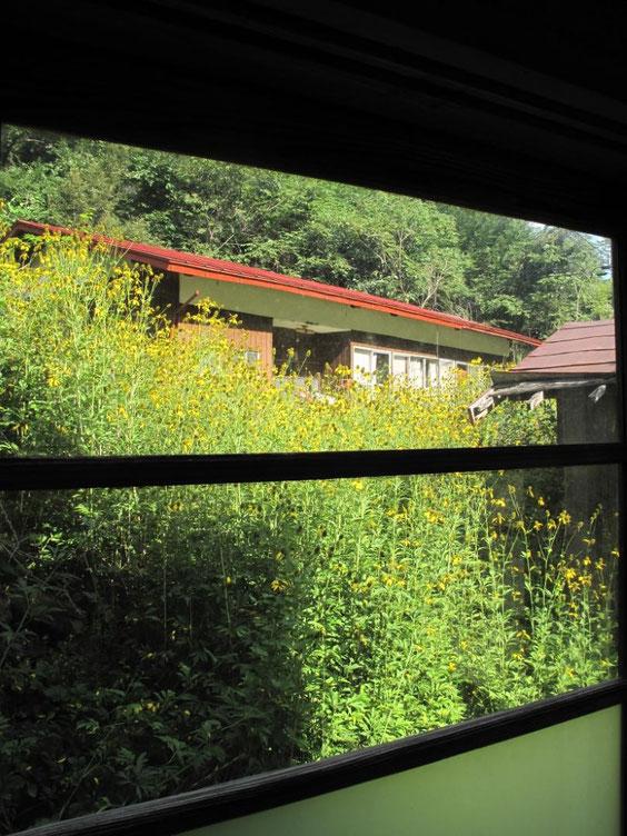 ◆長野県高遠町 芝平分校跡にて。