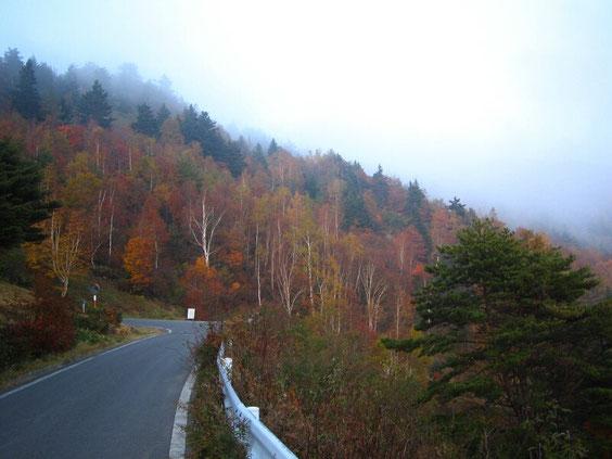 ◆山田牧場  長野県
