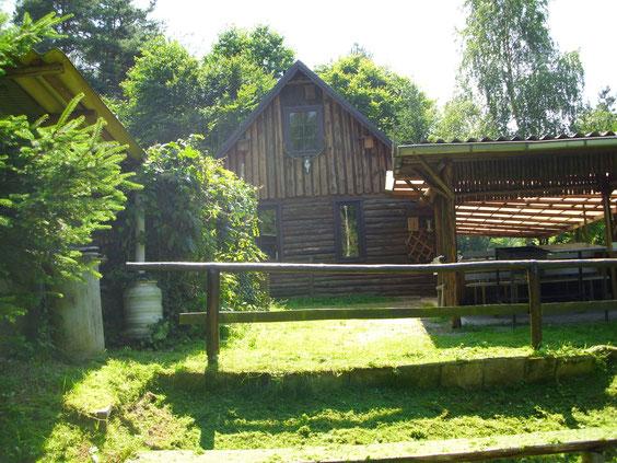 Waldhaus Seitenansicht