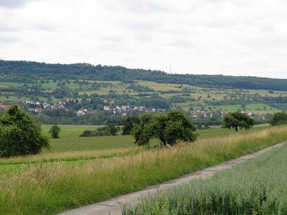 Blick auf Bliesdalheim