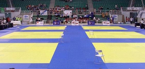 Tatami del Campeonato de España