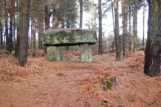 Steinmonument im Wald