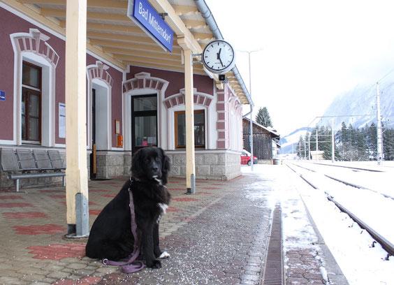 Vanja guckt irgendwie nicht so recht glücklich am Bahnhof