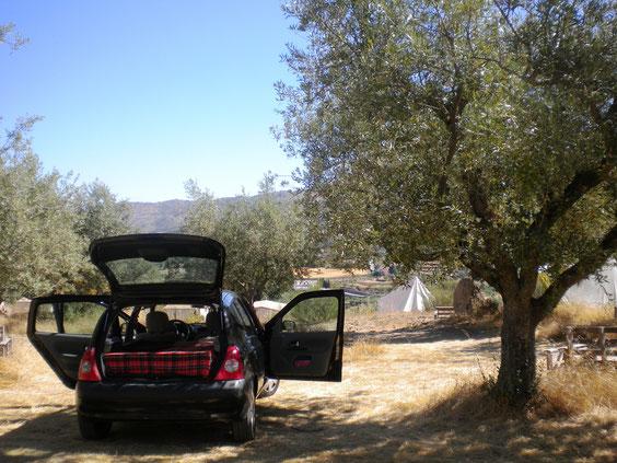 1er arrêt, 1er camping sympa au milieu de nulle part trouvé totalement par hasard!