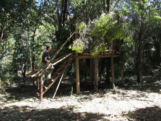 Umasithala su palafitte nella foresta della Bushmen valley