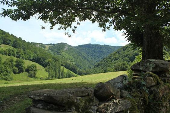montagne des Arbailles