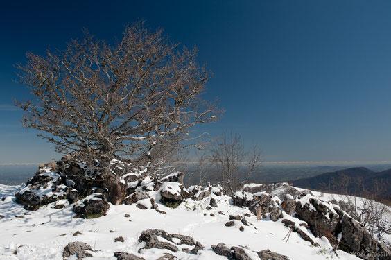le sommet avec la neige