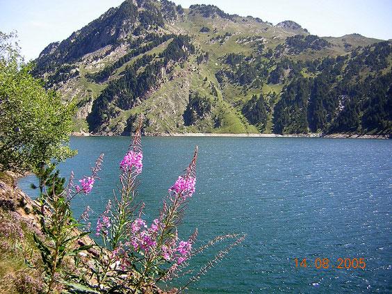 l'étang de Naguille