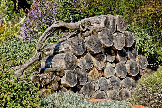 Totholz Holzstapel Holzstoß Holzstoss Naturgarten wildlife garden wood pile log pile
