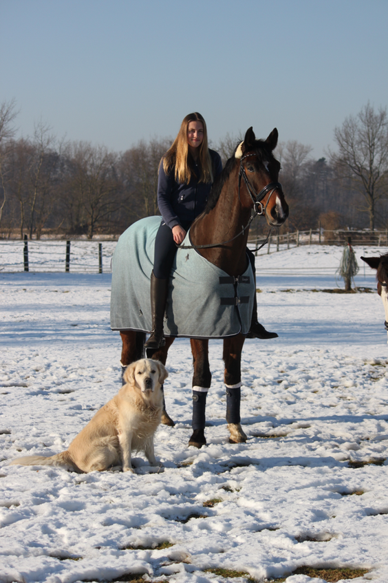 Greta mit clooney und Calle im Schnee ❄️