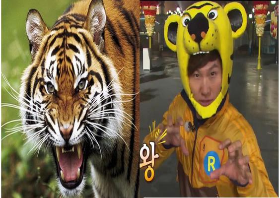 """Kim Jong Kook Apodado """"Tigre"""""""