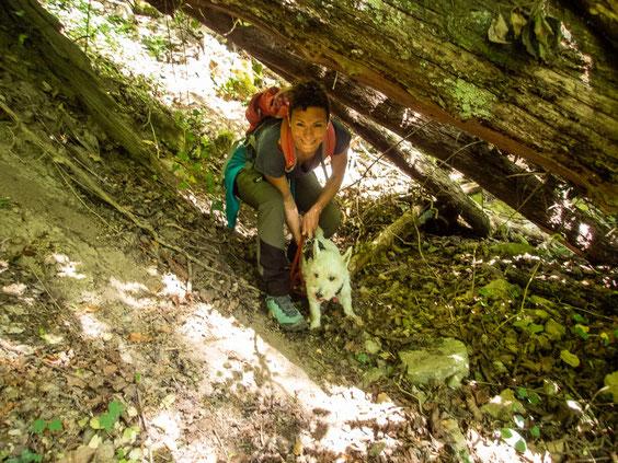 Kreuz und quer suchten wir die Höhle und waren später voll mit Zecken.