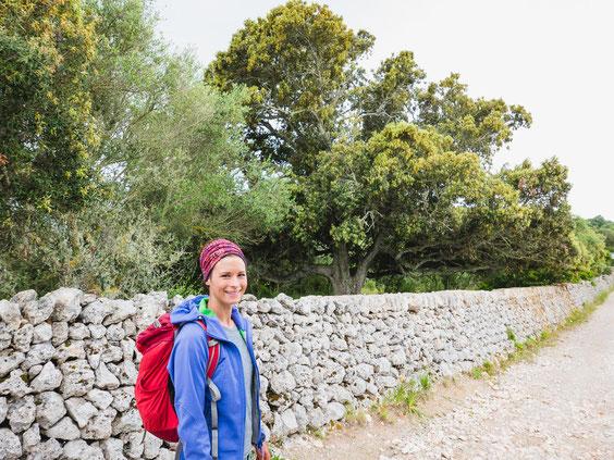 Hier sieht man eine solche Trockenmauer im Hintergrund. Im Hinterland von Menorca sind diese aus dem Landschaftsbild nicht weg zu denken.