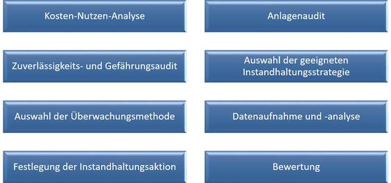 Kosten-Nutzen-Analyse, Anlagenaudit, Zuverlässigkeits- und Gefährungsaudit, Auswahl der geeigneten Instandhaltungsstrategie, Auswahl der Überwachungsmethode, Datenaufnahme und -analyse, Festlegung der Instandhaltungsaktion, Bewertung [nach DIN ISO 17359]