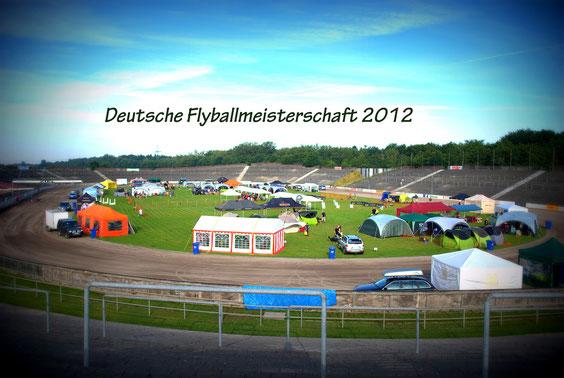 Homepage der DFM 2012