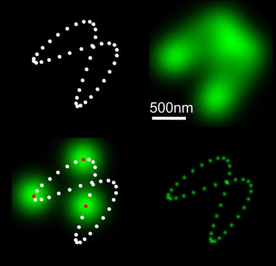 Grüne und weiße Punkte auf schwarzem Grund - Innenleben von Mitochondrien.
