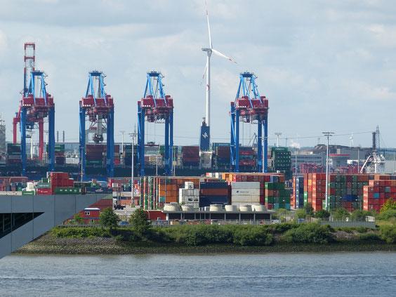Windräder erzeugen sauberen Strom und halten auch in Großstädten wie Hamburg immer mehr Einzug. Bild Credits: Falco von Pixabay.