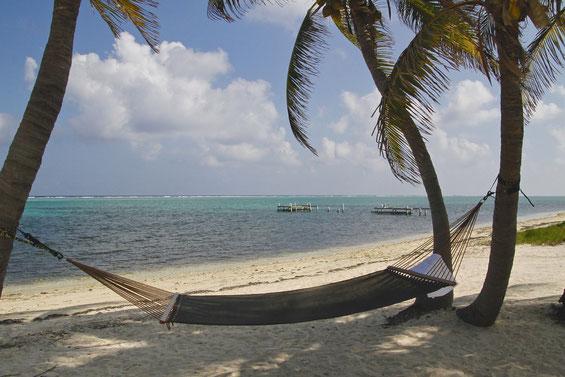 Strand, Meer, Hängematte zwischen Palmen, freaky finance, finanzielle Freiheit, Ziel