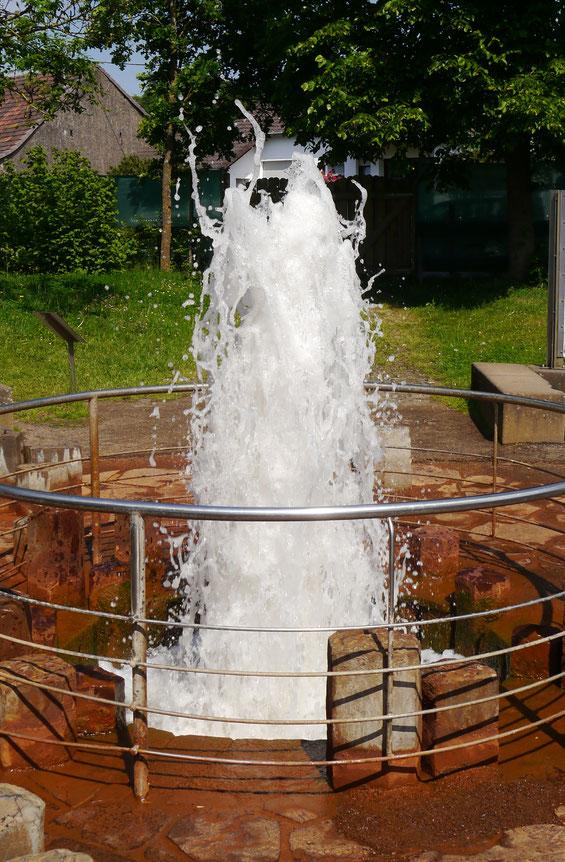 """Der """"Wallende Born"""" oder """"Brubbel"""", CO2-genährter Kaltwassergeysir in Wallenborn"""