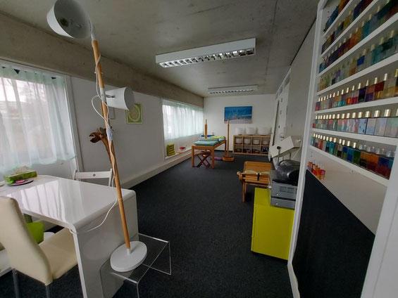 Liege-Monochord Holz 55 Saiten Ton E Tamtam Gong Klangröhren Serenum Klang - Wellen FarbKlang-Coaching Wellness für die Seele