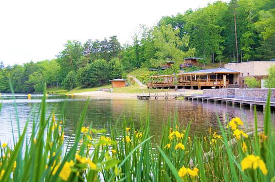 Pêche de la carpe à l'étang de Ruffaud en Corrèze -Limousin-