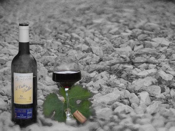 vin de pays charentais rouge bio l'ouche du pavillon du Domaine J'y Crois