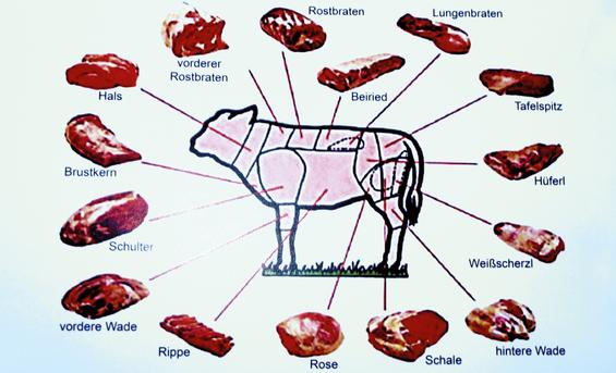 Das Bild ist eine Tafel, die die Fleischteile vom Rind genau zeigt