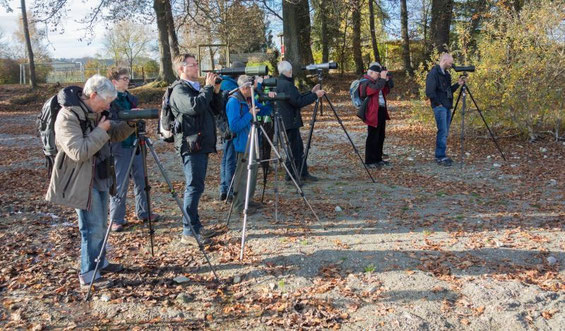 Exkursion OAB-Jahrestagung, 07.11.2015, Kesswil (Foto: Robert Morgen)