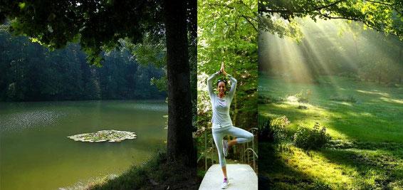 Waldbaden -  Entspannung, Atmung und Yoga im Wald