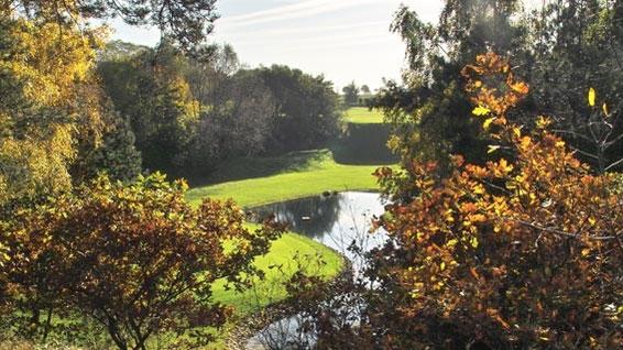 Dr. Reinhard Koss Golfplatz-Gutachten
