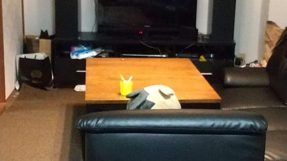 ソファーに何か座っている写真