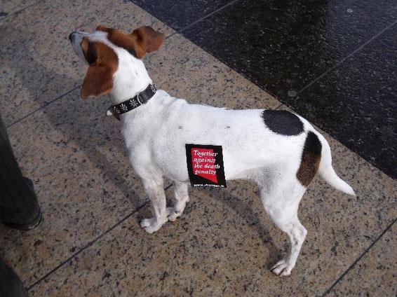 Auch mit von der Partie: Little Dogs Against the Death Penalty! *smile*