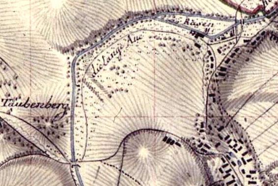 """""""Die Lange Aue"""" (Langa) im Lotzdorfer Röder-Bogen. Li.u.: Brücke zur Tobiasmühle,  re.o.: Rasen-Mühle (Lotzdorfer Mühle), unten Mitte: die """"Dreihäuser"""" (Q.: SLUB DD Meilenblätter Bl. 258)"""