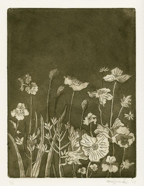 銅版画「Garden」の画像