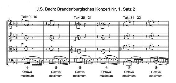 Bach Brandenburgische Konzerte Ovtava maximum