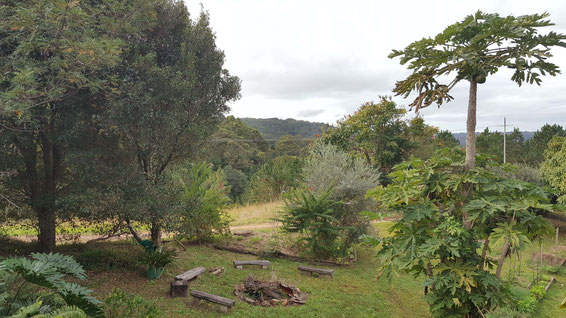 2016 : View of Avatar's Abode in the far distance from John's backyard. Photo taken by Anthony Zois