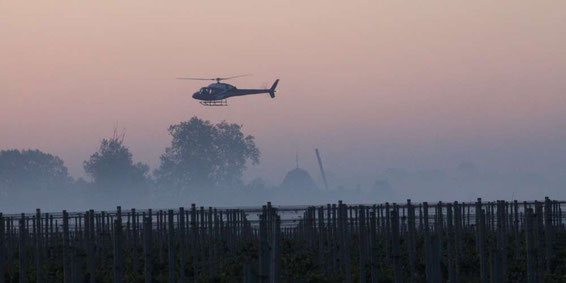 helicopters-in-vineyards-to-combat-frost