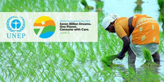 Imagen: Poster oficial UNEP