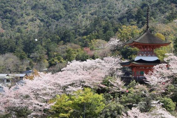 La pagode Tahoto