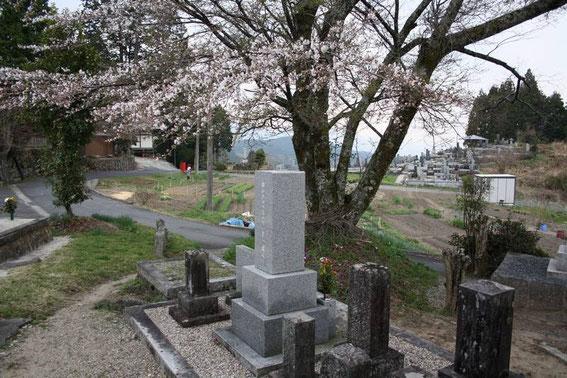 Les jardins potagers au pied du temple et son cimetière.