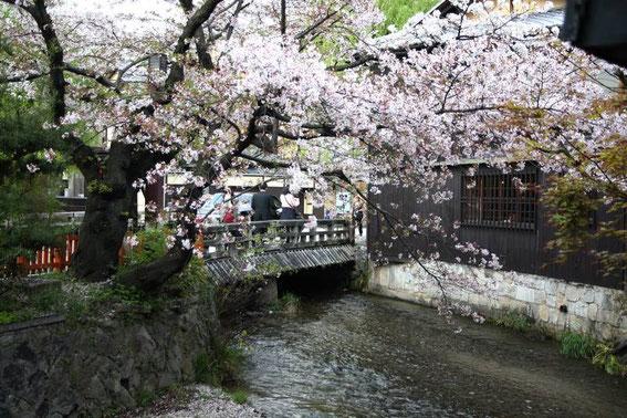 Canal Shirakawa