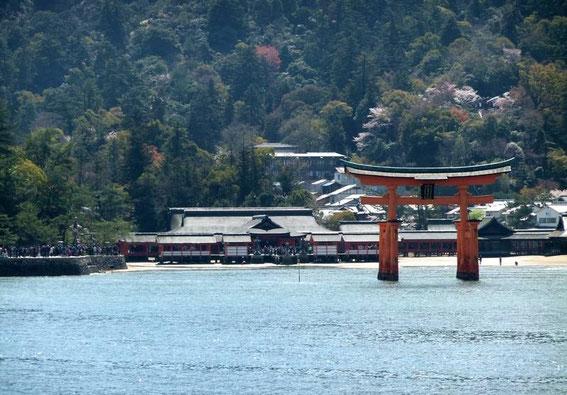 Le torii et en arrière plan le sanctuaire d'Itsukushima