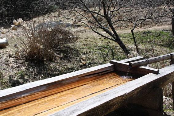 Devant la tateba-chaya...  l'évier en cyprés où coule une eau très pure d'une bouche en bambou