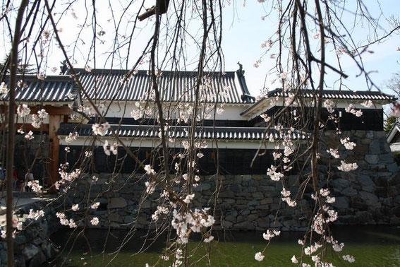 Taikō-Mon- Bâtiment et douve