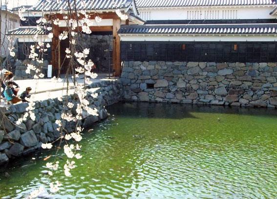 le Taikō-Mon : la porte extérieure du masugata (Kōrai Mon)
