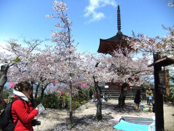 Entrée du Parc de Miyajima sur le sentier Asebi