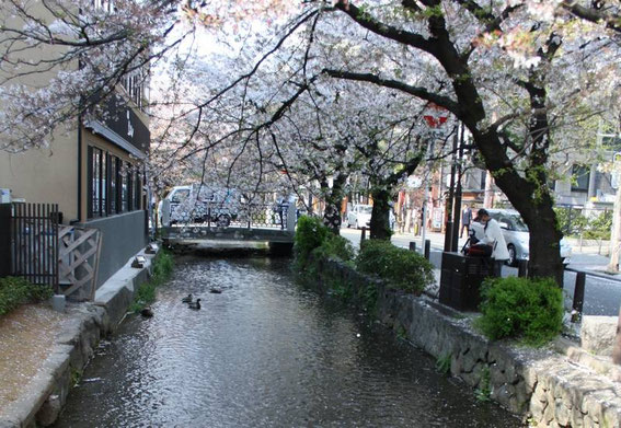 Pontocho - Le long du canal Takasegawa